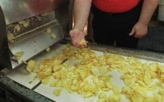 Производство чипсов из картофеля: пошаговая бизнес идея