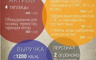 Бизнес план теплицы: подробные расчеты