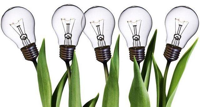 Бизнес идеи из Америки: 8 вариантов