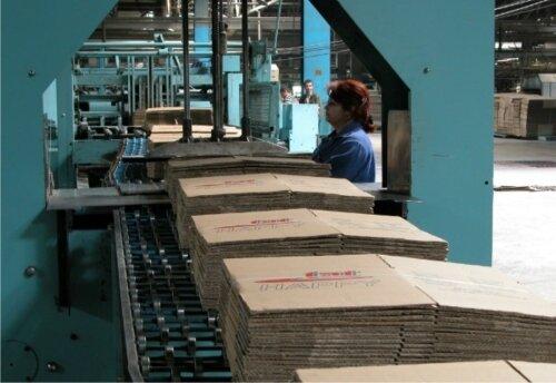 Производство картонной упаковки: этапы, требования, рентабельность
