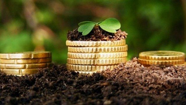 Бизнес идеи для села: ТОП-5 лучших проектов
